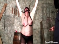 Chubby busty brunette gets tied